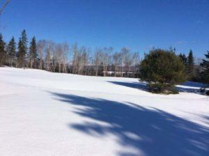 canada field jan 2017