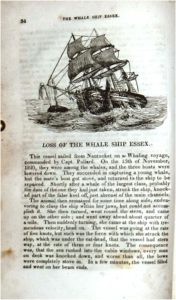 The Mariner's Chronicle